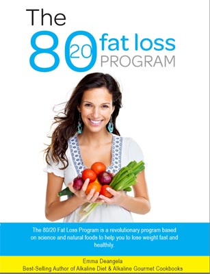80/20 fat loss review