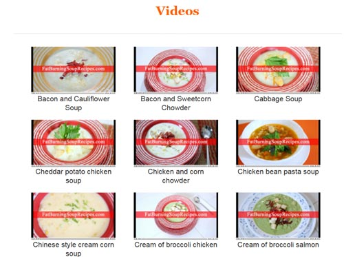 fat burning soup recipes scam