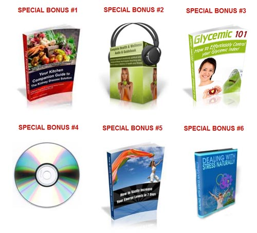 kidney disease solution bonuses