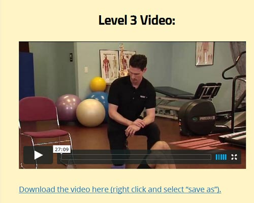 my back pain coach level 3 video